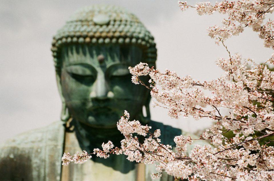 La ventana de la nariz del Buda
