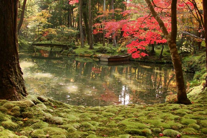 La Ruta Dorada de Japón (Reversa)